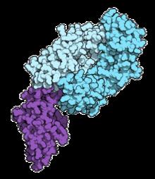 OTSZ Online - Immunterápia- óriási lépés a rák gyógyításában