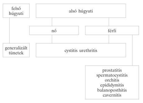 pszichoszomatikus nemi szemölcsökkel)