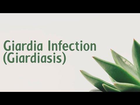 Paraziták kaviárban, A flukes paraziták kezelése Parazitaflukes készítmények Paraziták kaviárban