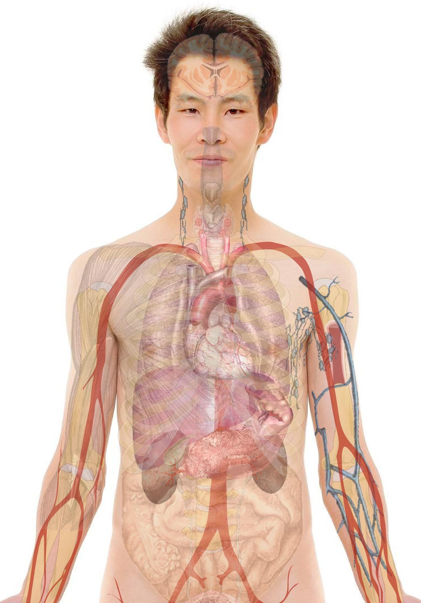 helmint diagnózis