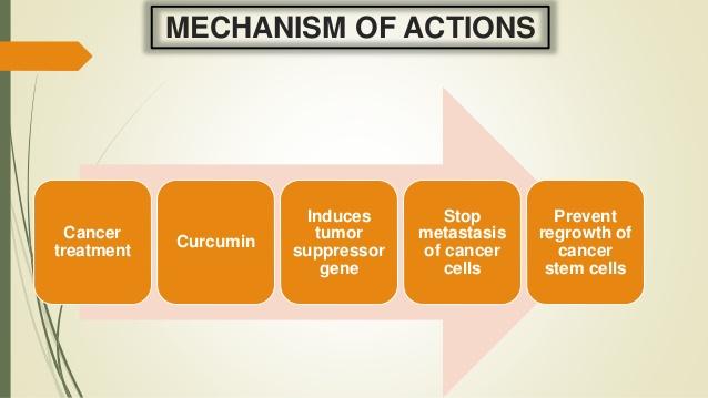 májrák kezelési lehetőségek, kutatási eredmények, májrák szakértők ,onkológiai magánklinika